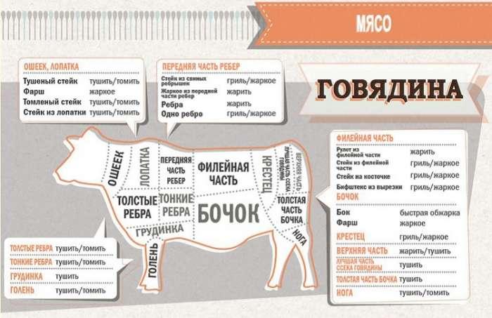 Советы: Таблица про говядину
